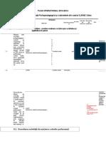PLAN OPERATIONAL 2013 - sem I.docx_0