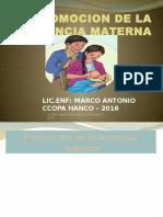 Promocion de La Lactancia Materna (2)
