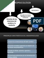 Neuropsicológía Clínica