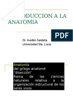 1Intro a Anatomia