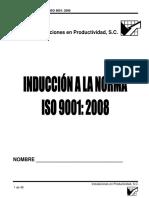 Induccion a La Norma ISO 9001 2008 (MANUAL)