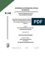Relacion Del Indice Cintura Cadera