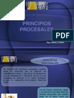 PRINCIPIOS PROCESALES.pptx