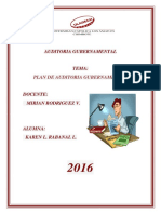 Plan de Auditoria Gubernamental