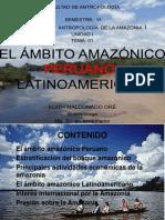 1.-EL-AMBITO-AMAZONICO-PERUANO-Y-LATINOAMERICANO.pdf