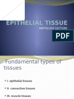 EPITHELIAL TISSUE.pptx