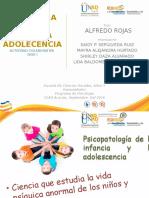 Fase 1 Actividad Colaborativa Psicologia de la Infancia y adolecencia