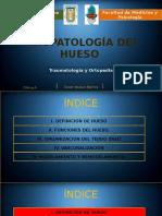 Fisiopatología Del Hueso