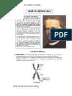 genetica-mendeliana.docx