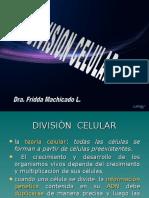 divisioncelular-101020162308-phpapp01.ppt