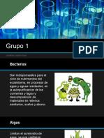 Grupo_1