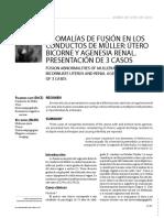 5.Anomalias de Fusion Muller