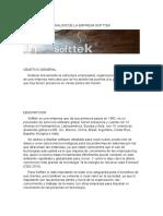 Analisis de La Empresa Softtek
