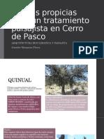 Plantas Tratamiento Paisajista Cerro