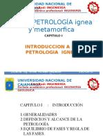 petroIgnMet capI (1).pptx