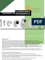 Desarrollo Embrionario Temprano en Vertebrados e Invertebrados
