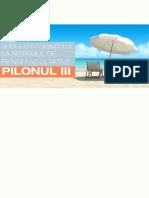 pilon_III