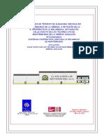 Resumen No TecnicESUMEN NO TECNICO o Aau 13-086