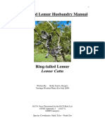 Ring Tailed Lemur.pdf
