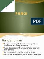 Dasar 2 Fungi