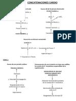 Concatencaciones Todas 2º Medicina UIC
