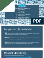 PENGENALAN BENIH.pptx