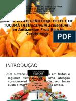 Efeito Genotóxico in vitro do Tucumã