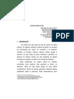 Oleos Essenciais.pdf