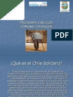 PROGRAMAVINCULOS.pdf