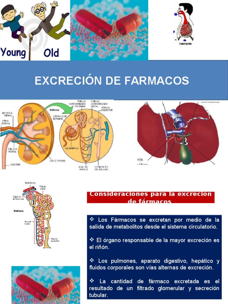 Excrecion de Farmacos - Riñón - Medicamentos con receta