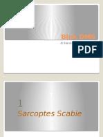 DMS-Sarcoptes. Pediculosis, Cutaneus Larva Migran-2