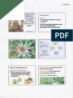 Botani.pdf