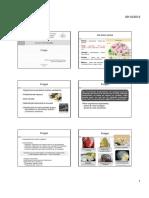 Fungos [Modo de Compatibilidade].pdf