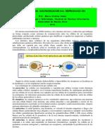 Conceptos Sobre Integración Neuroendocrina-reproducción