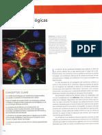 Capítulo 5_Membranas Biológicas