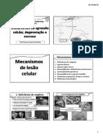AgressãoDegNecroseGangrena [Modo de Compatibilidade].pdf