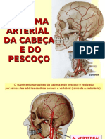 Sistema Arterial Da Cabeça e Do Pescoço