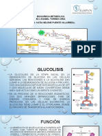 glucolisis k.pptx
