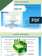 1.1 Conceptos y Terminologia Básica de Seguridad e Higiene Industrial
