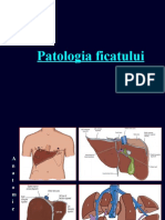Patologia ficatului.ppt