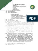 PLAN CURRICULAR ANUAL.docx