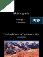 Biostratigraphy PDF