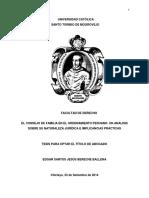Tesis Consejo de Familia Chiclayo