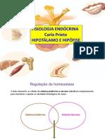 Aula 2 - Hipotu00E1lamo e Hipu00F3fise