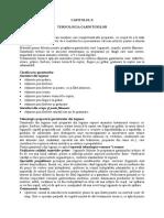 Cap.10 - Thenologia Garniturilor
