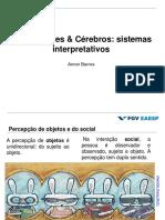 Organizações & cérebro - orgs como sistemas interpretativos.pdf