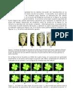 Cristalografia