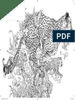 Animorphia-1.pdf