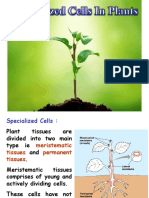 3. Specialized Cells.ppt