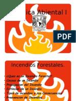 Quimica Abiental I Incendios